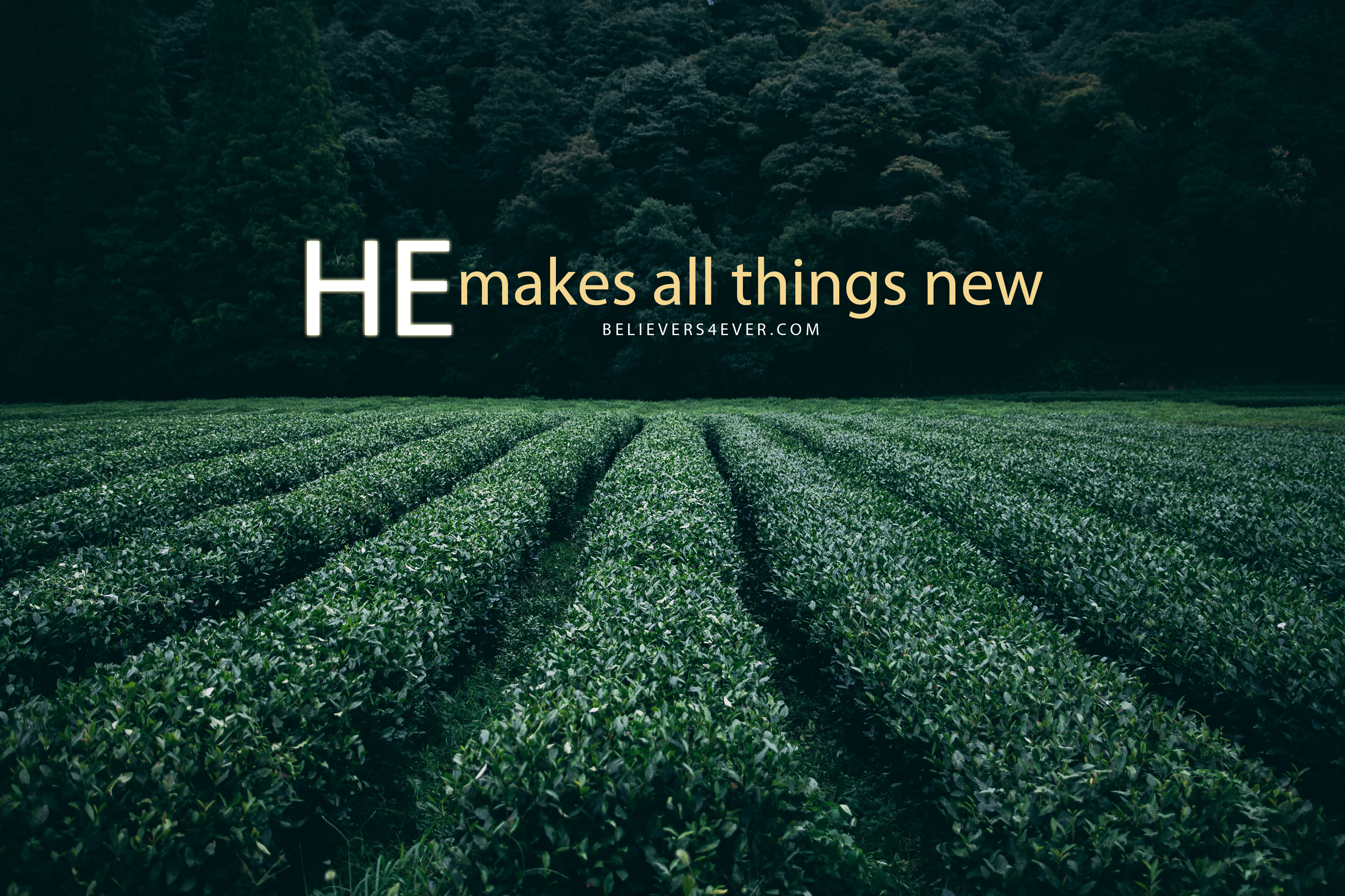 he-makes-all-things-new-wallpaper